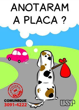 campanha convivência cães